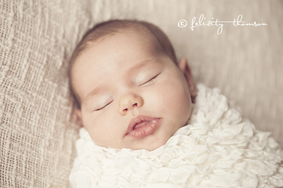 8 week old sweetness central coast baby photographer felicity thomson photography